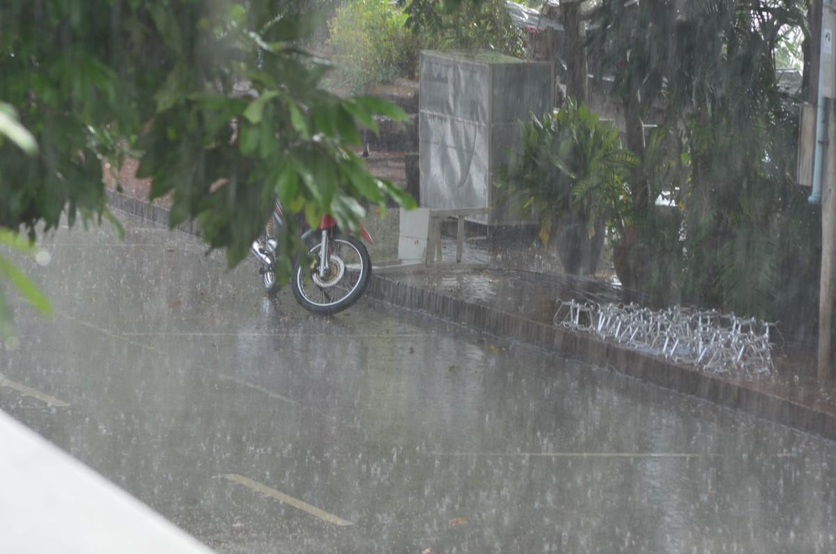 A sudden downpour (c) A. Harrison