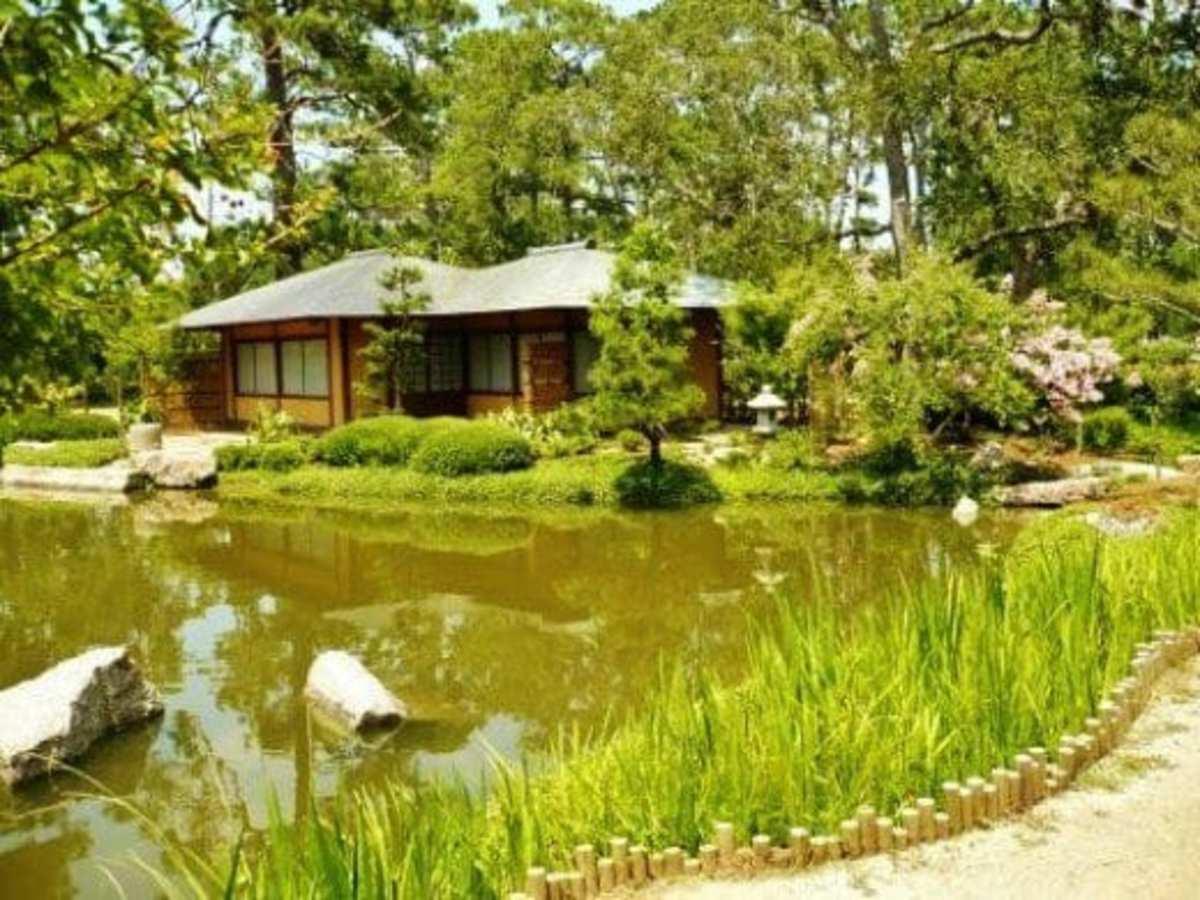 Japanese Tea Garden in Houston
