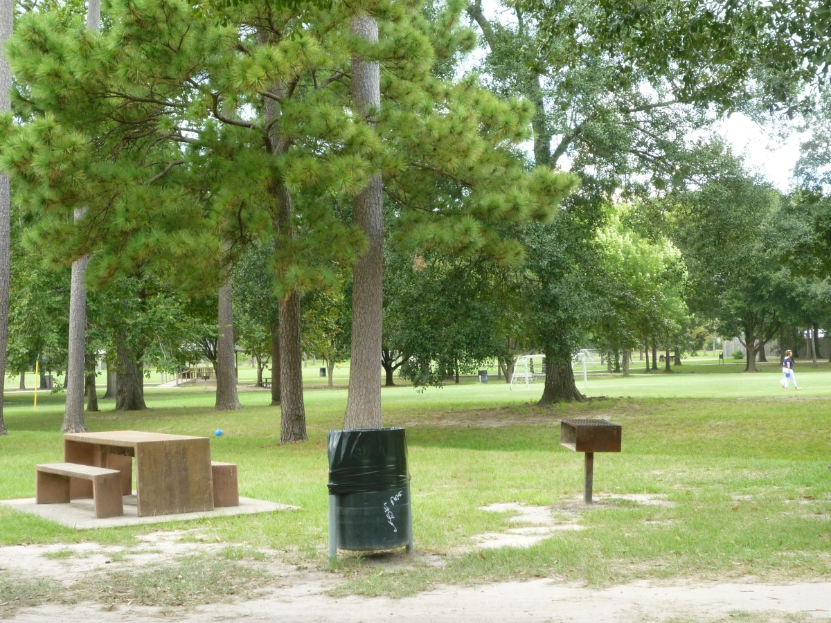 Picnic tables and BBQ pits in Meyer Park