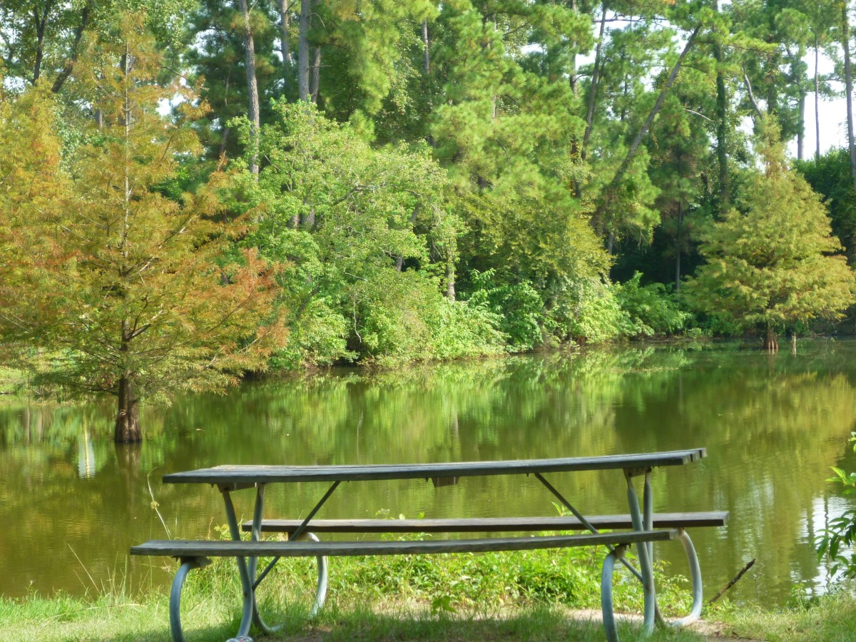 View of the fishing lake in Meyer Park