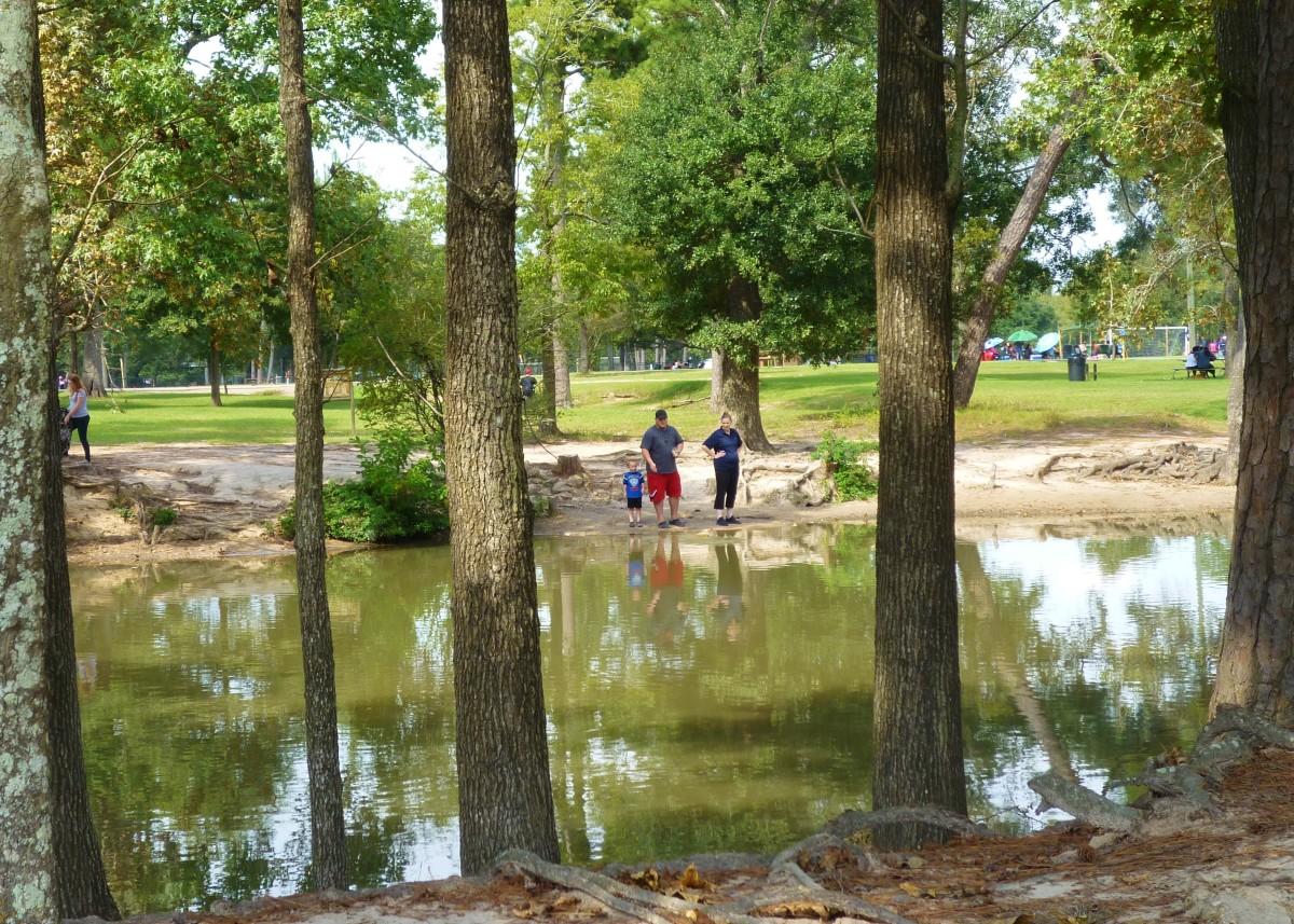 Duck Pond in Meyer Park