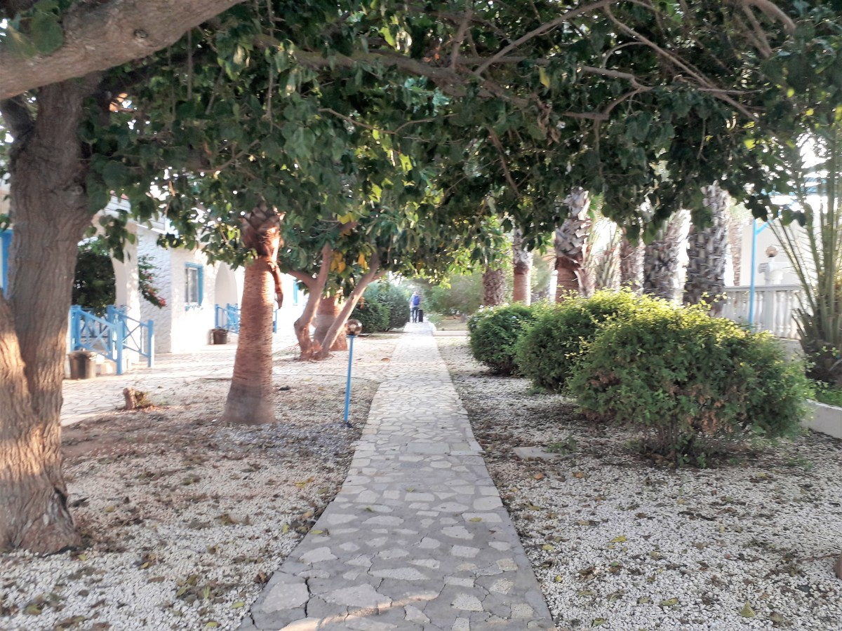 Shaded paths by the villas.