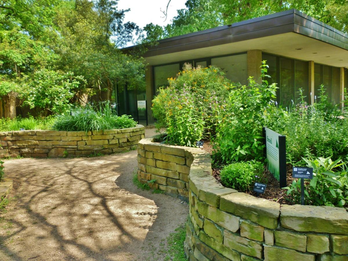 Carol Tatkon Sensory Garden