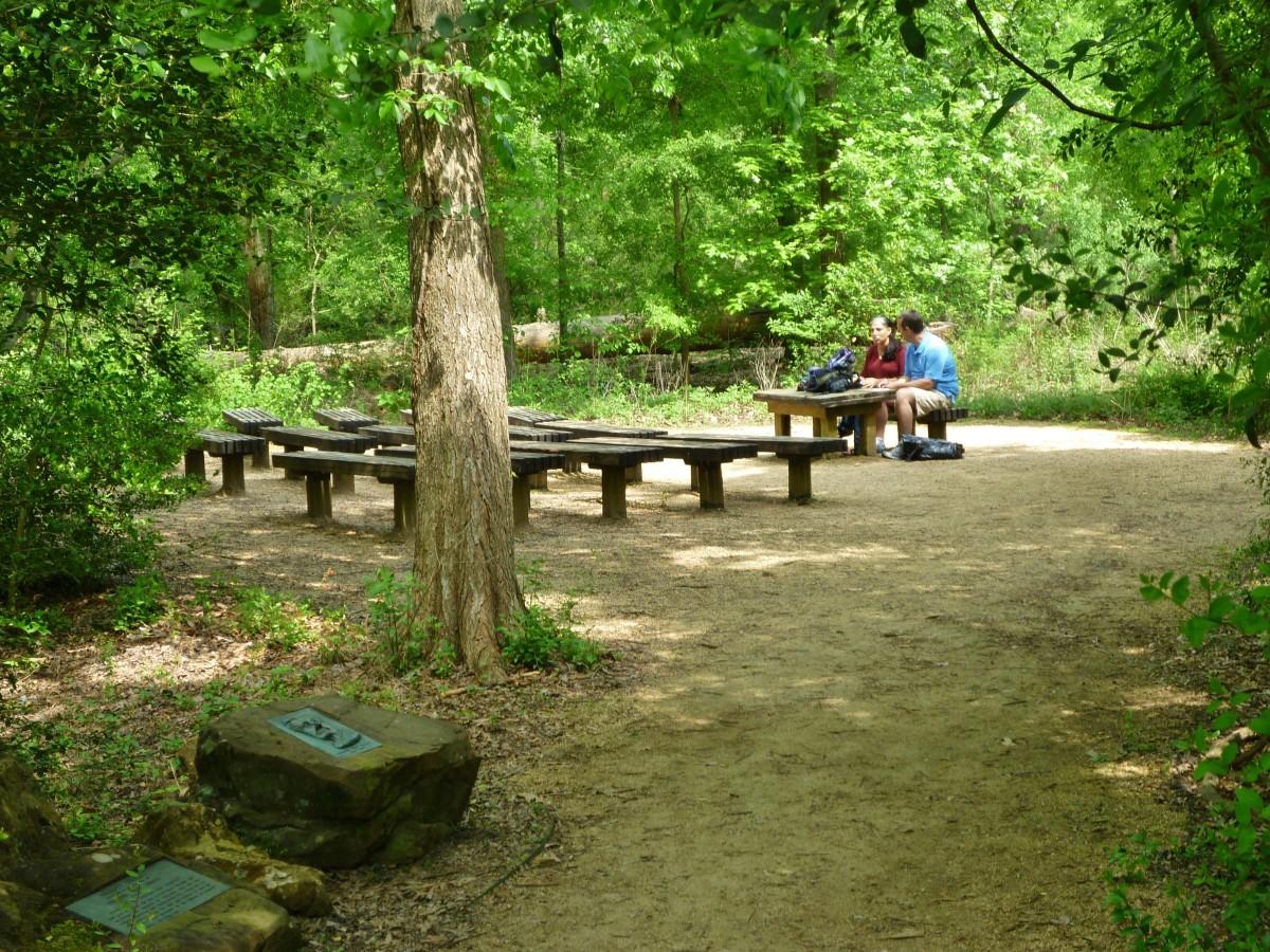 Emmott Circle at the Houston Arboretum