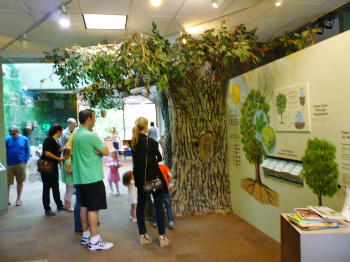 Discovery Room inside of the Houston Arboretum