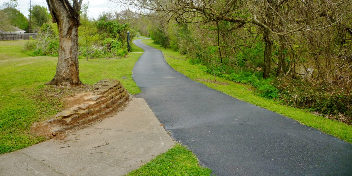 Paved Path on Park Trail