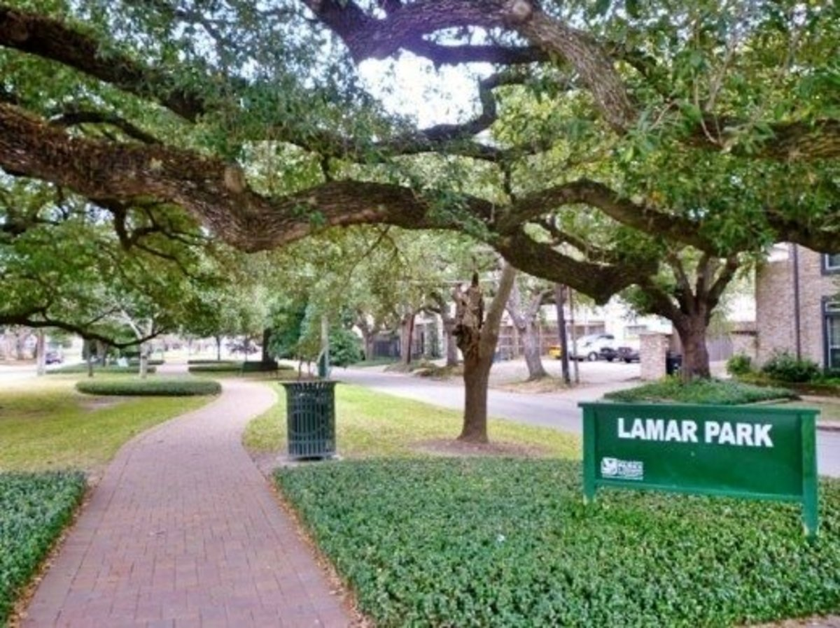 Lamar park photo in winter
