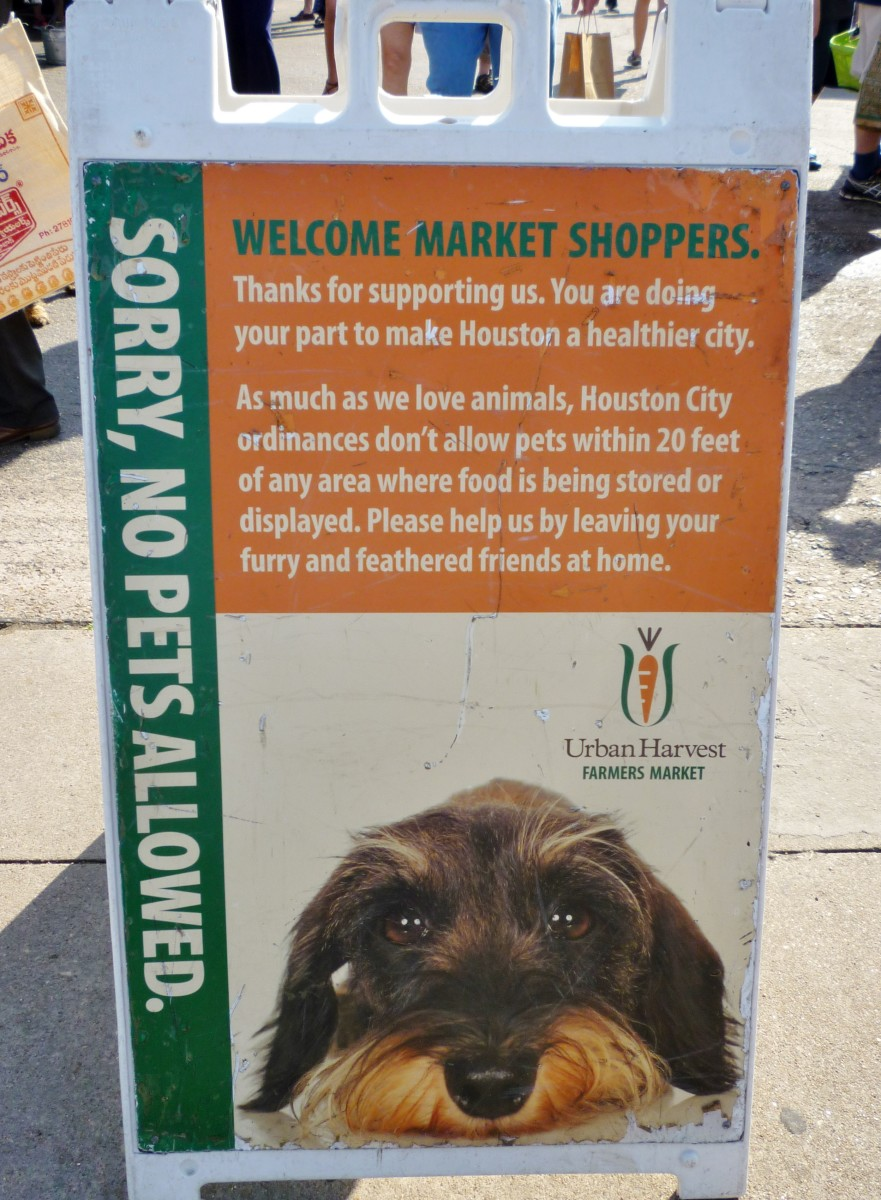 Pets are not allowed at Eastside Farmer's Market.