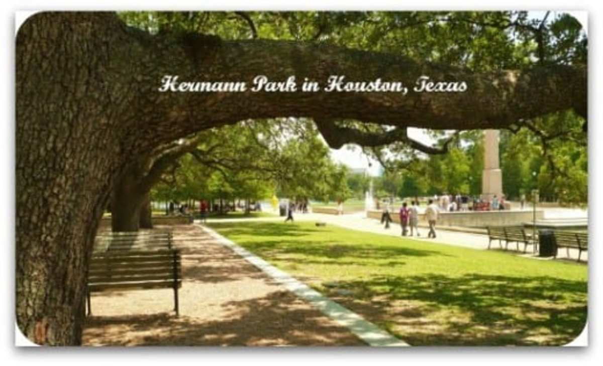 houstons-hermann-park-so-many-attractions