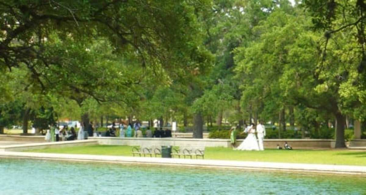 Bridal photos being taken near reflection pool in Hermann Park