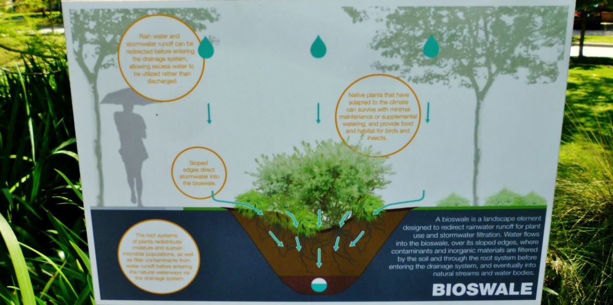 Sign showing how a Bioswale works