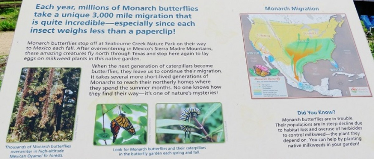 Informational sign in the butterfly garden area