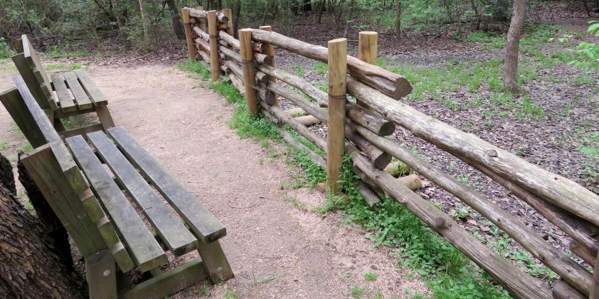 Bird sanctuary area of the park