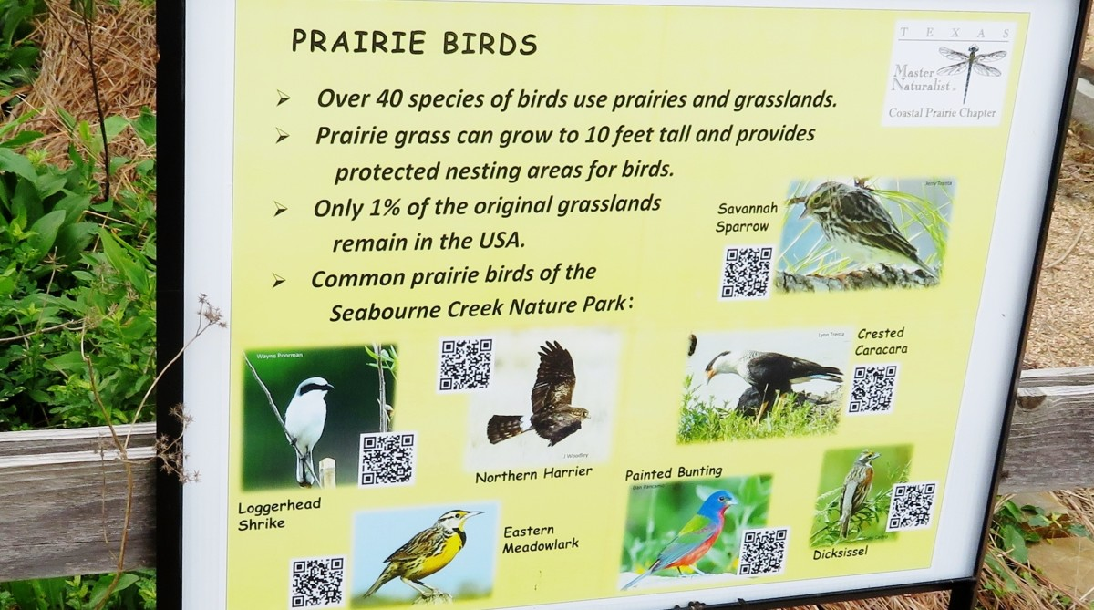 One of the many educational signs in the Prairie Demo Garden