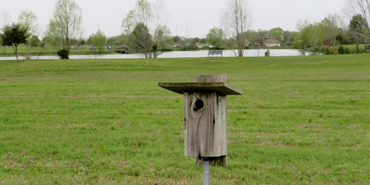 Many birdhouses