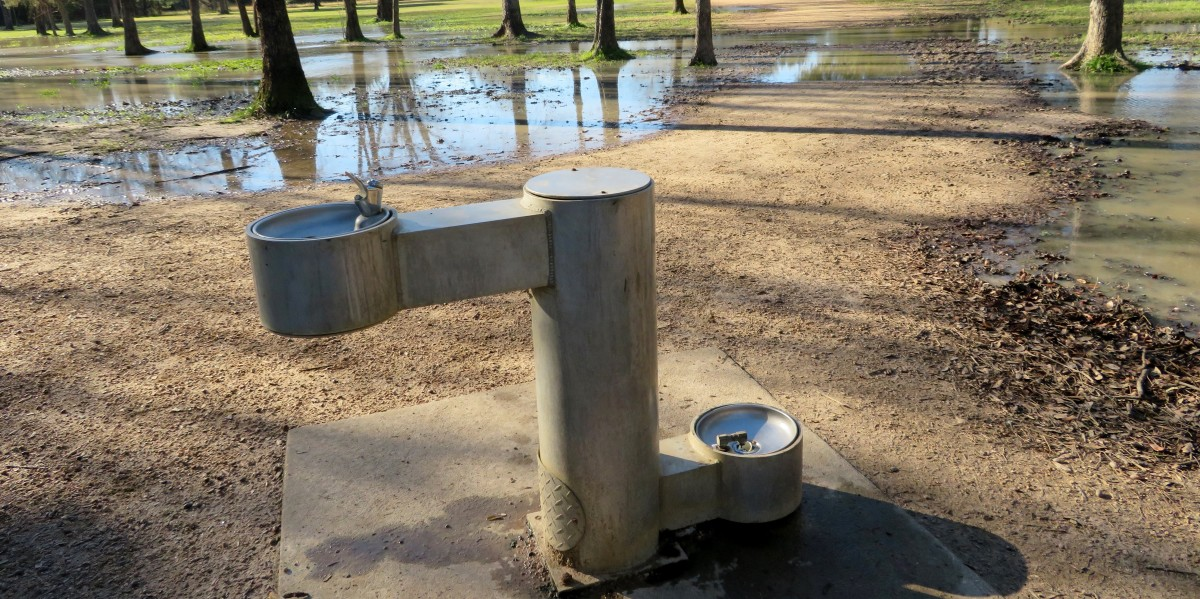 Water fountains for people and their pets in Congressman Bill Archer Park