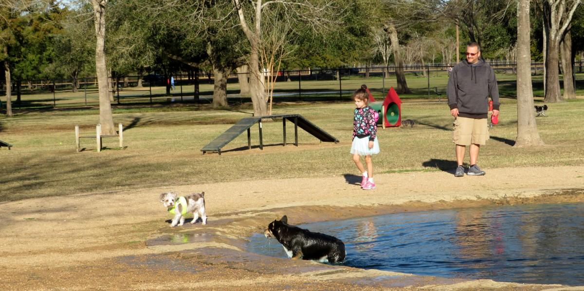 Small dog section in Congressman Bill Archer Park