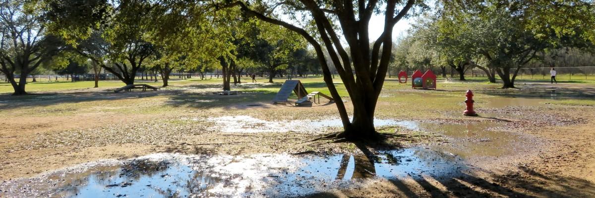 Visiting Congressman Bill Archer Park after a rainy day.