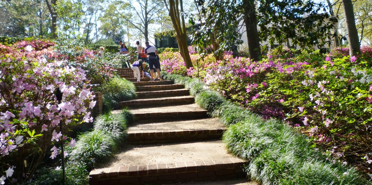 Steps through the gardens