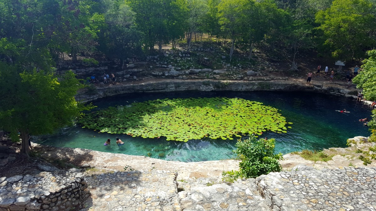 People swimming in a cenote at Dzibilchaltún in Mexico