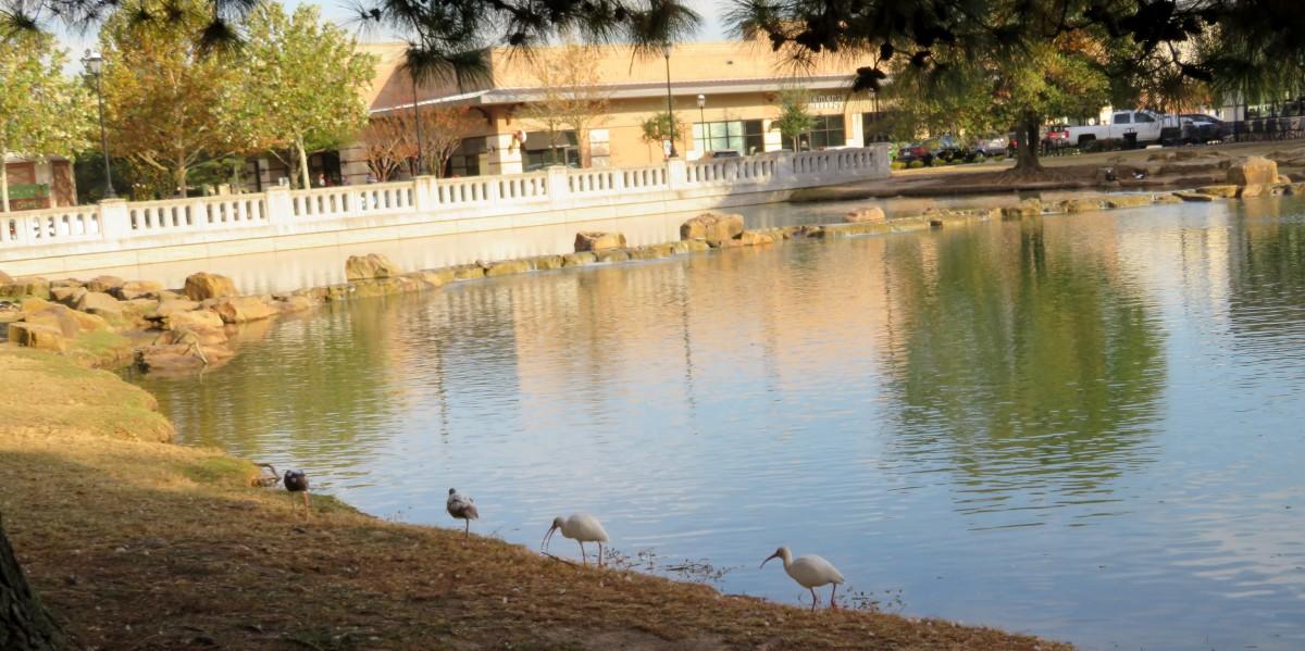 Waterways in La Centerra Shopping Center