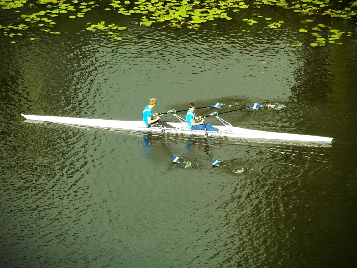 Rowers in Amsterdam.