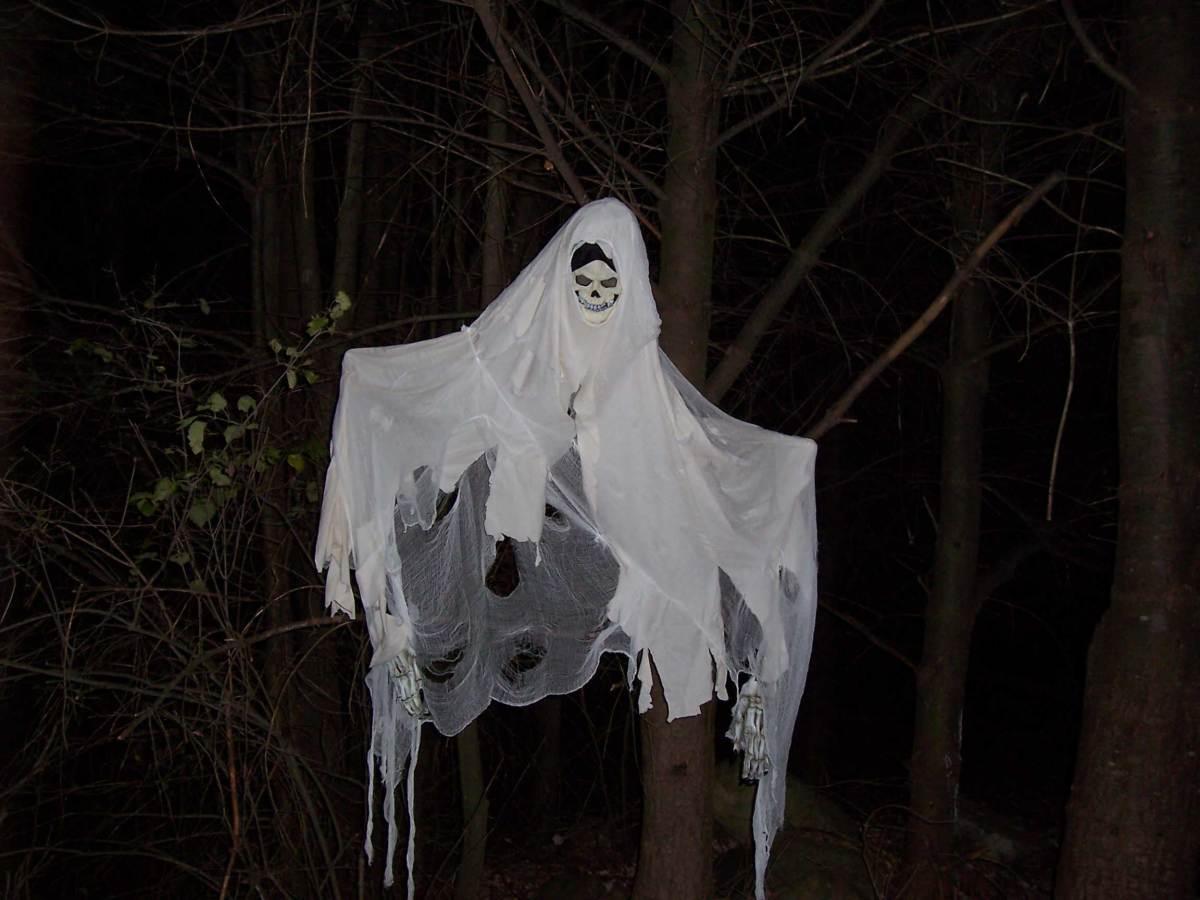 A Banshee Halloween Decoration