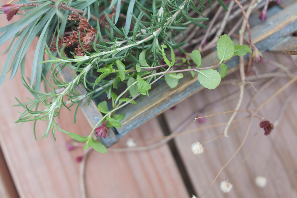 Hex-Breaking Herbs