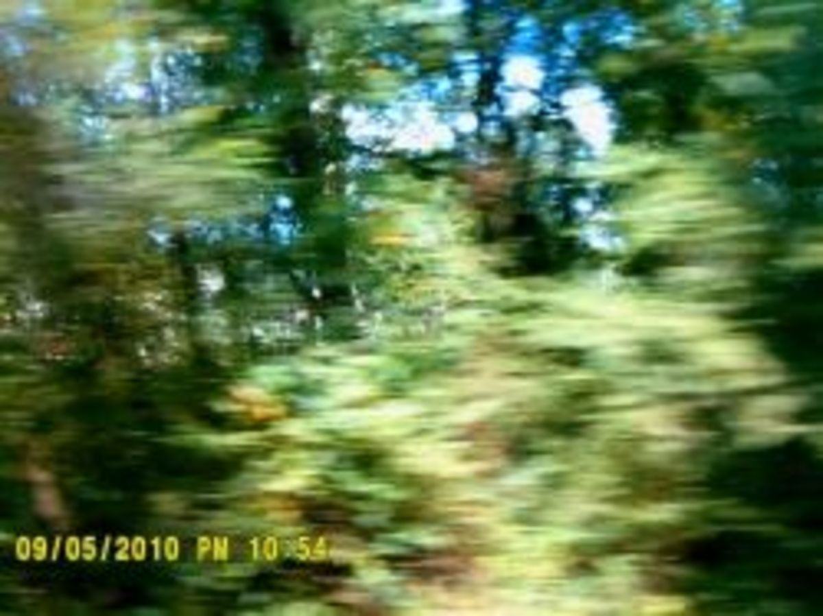 Random Shot on Trace while driving. Do you see a ghost?