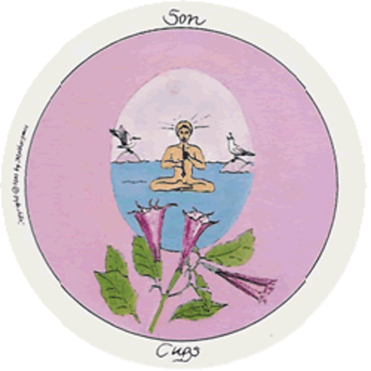 Son of Cups