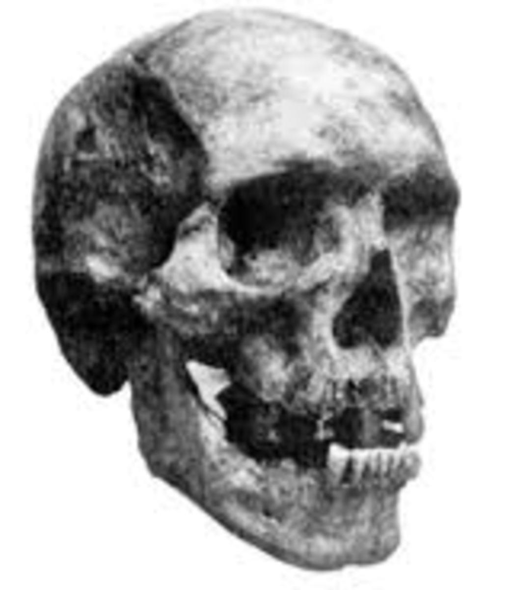 The Skull of Khwit