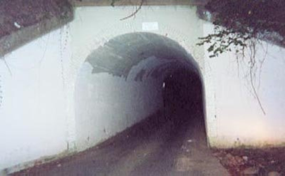 The Goatman Bridge, a popular spot where people often go in search of the legend. Also known at The Bunnyman Bridge.