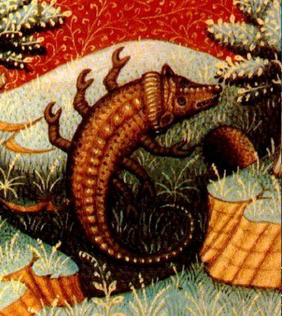 Here is an unusual image representing the Scorpio sun sign. I think it looks more like a lizard, another Scorpio symbol.