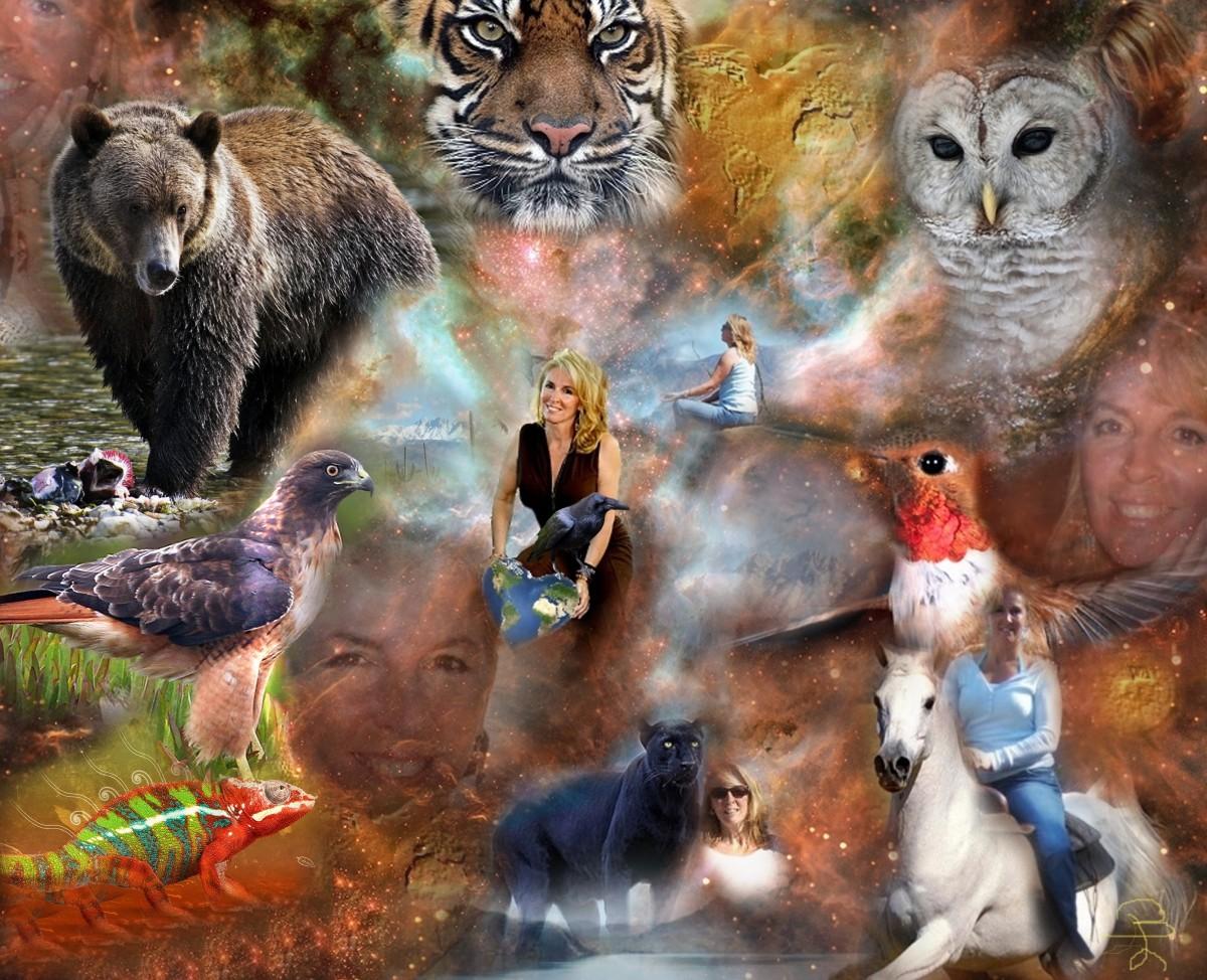 Some Animal Spirit Guides