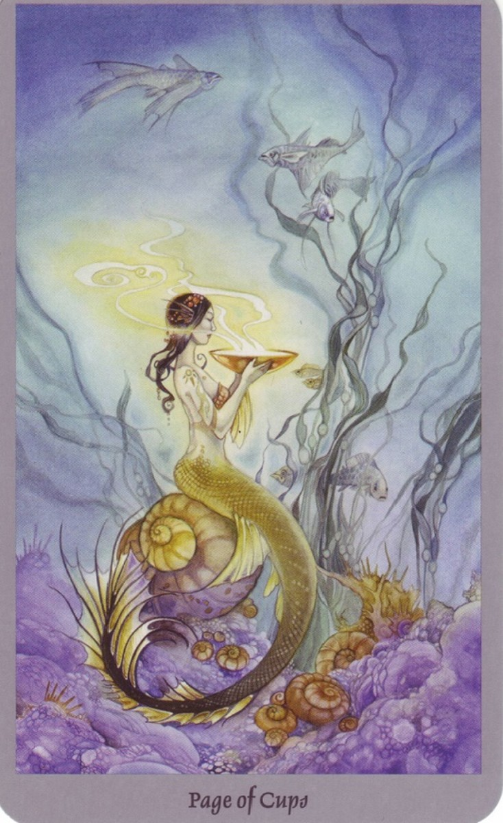 The Page of Cups from the Shadowscapes deck.