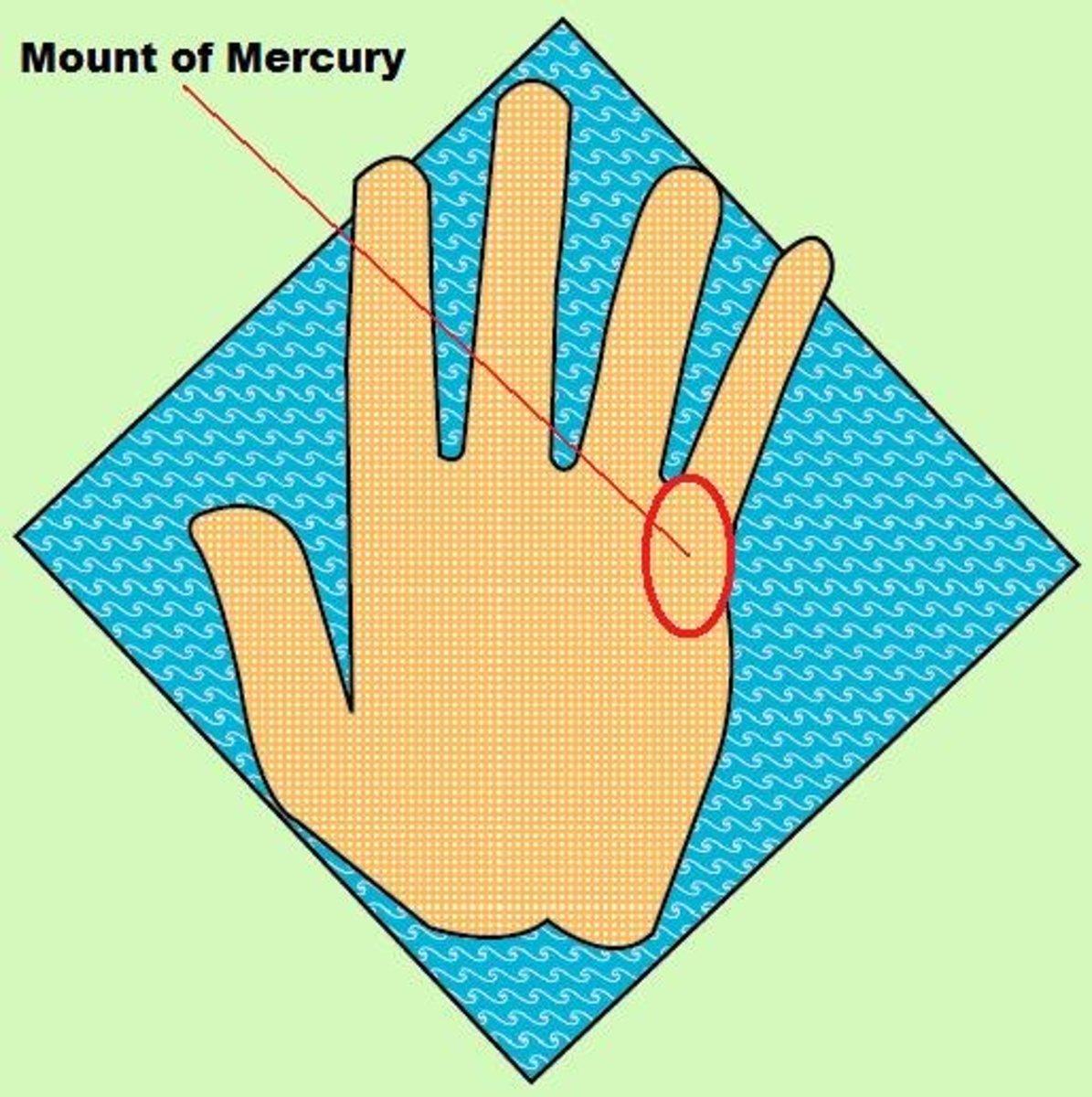 Mount of Mercury below little finger