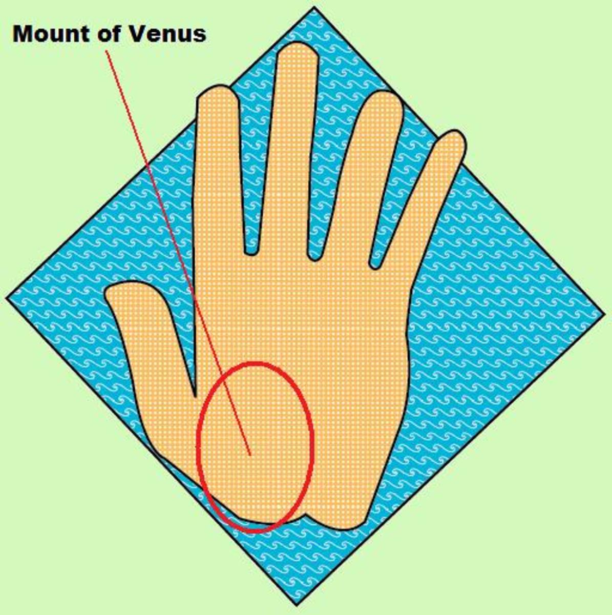 Venus mount below thumb