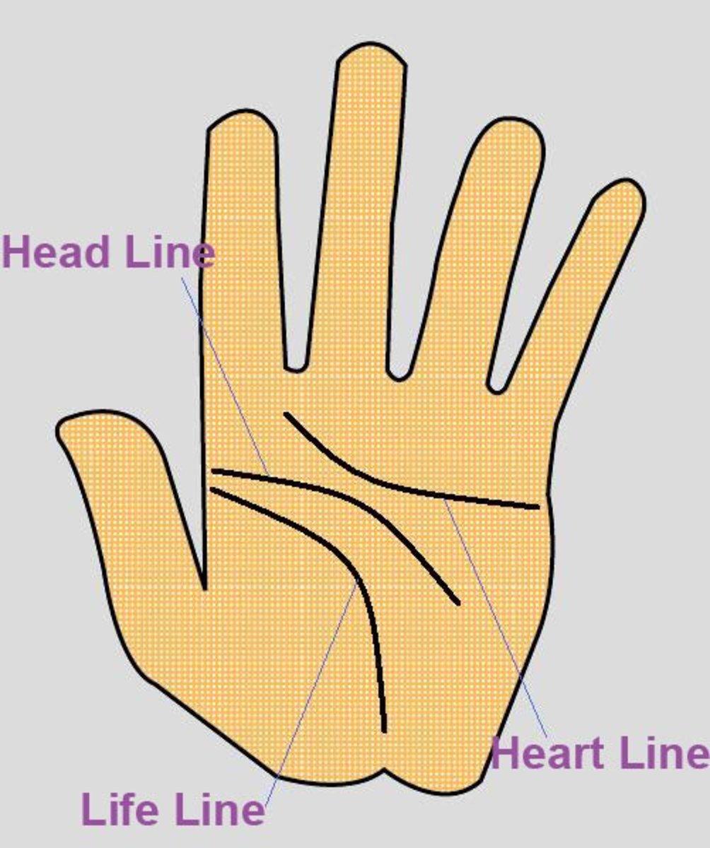 Three Major Lines in Palmistry