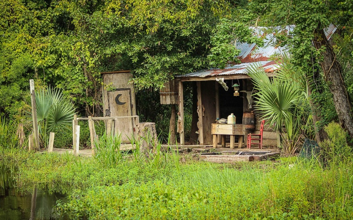 Cajun cabin in the bayou. Could be Dieter's place.