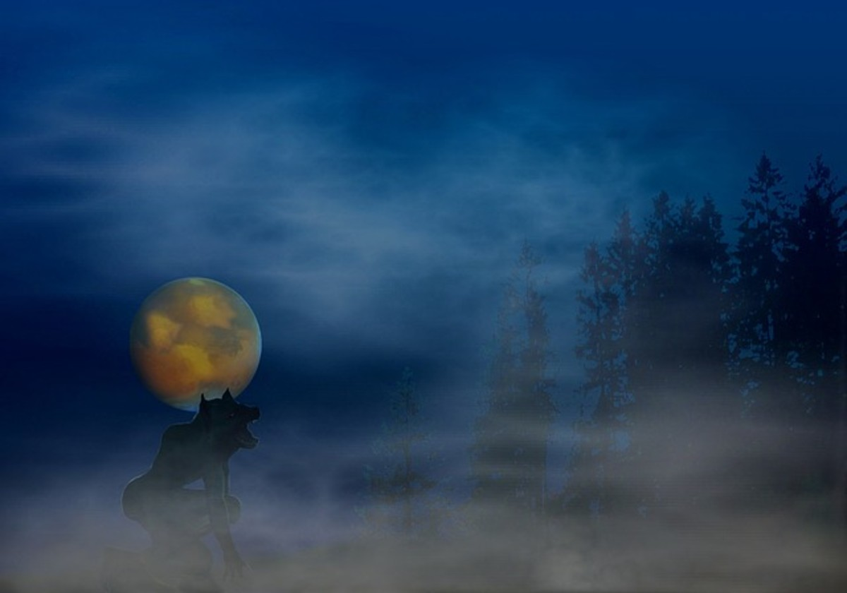 Werewolf and a full moon on a misty night.