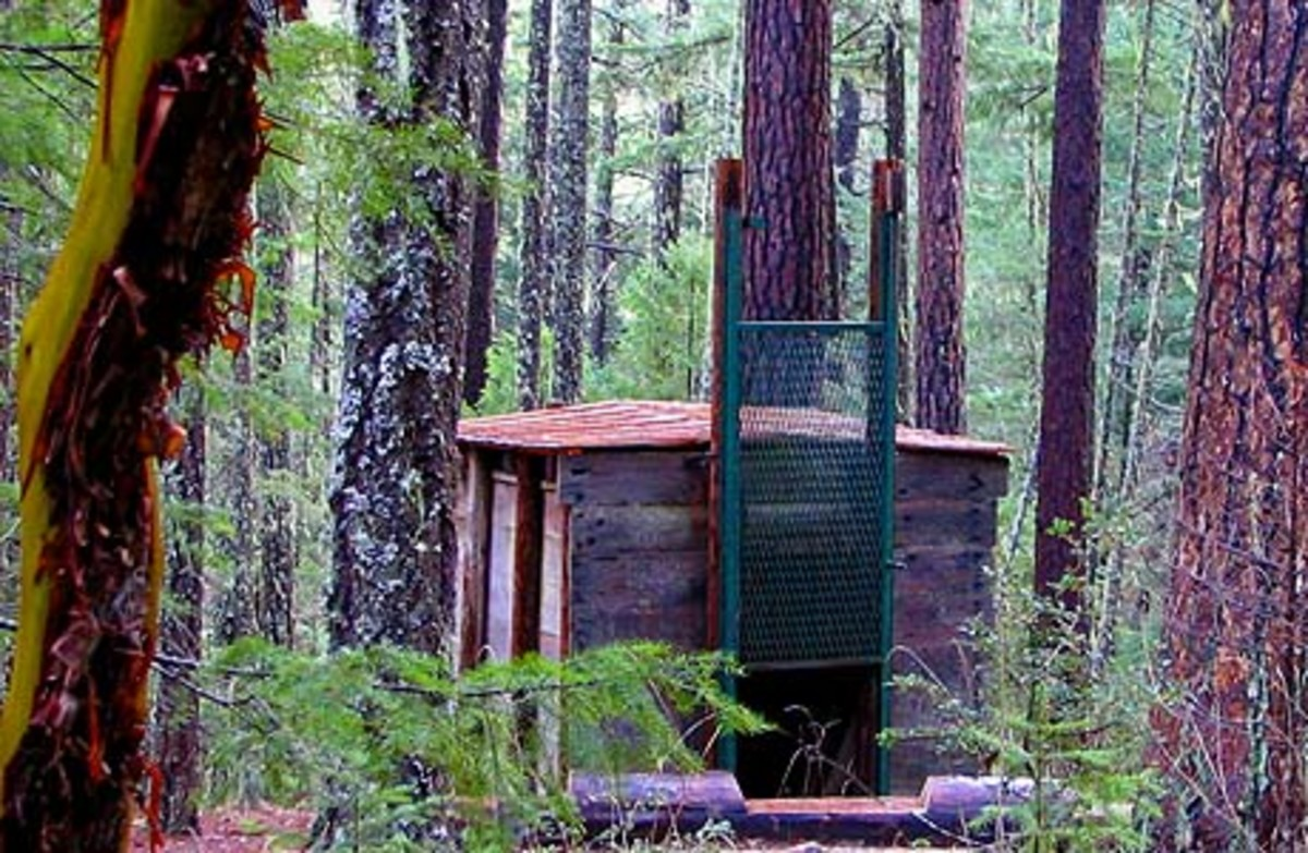 Possibly the world's only Bigfoot trap, located in Siskiyou National Forest, Oregon. This thing seems like it could end the Sasquatch debate once and for all!