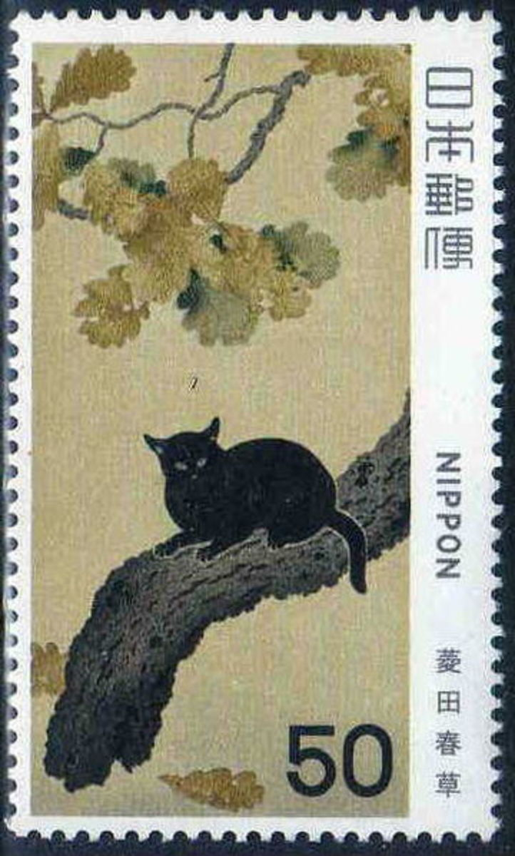 Why are black cats bad luck in some countries?