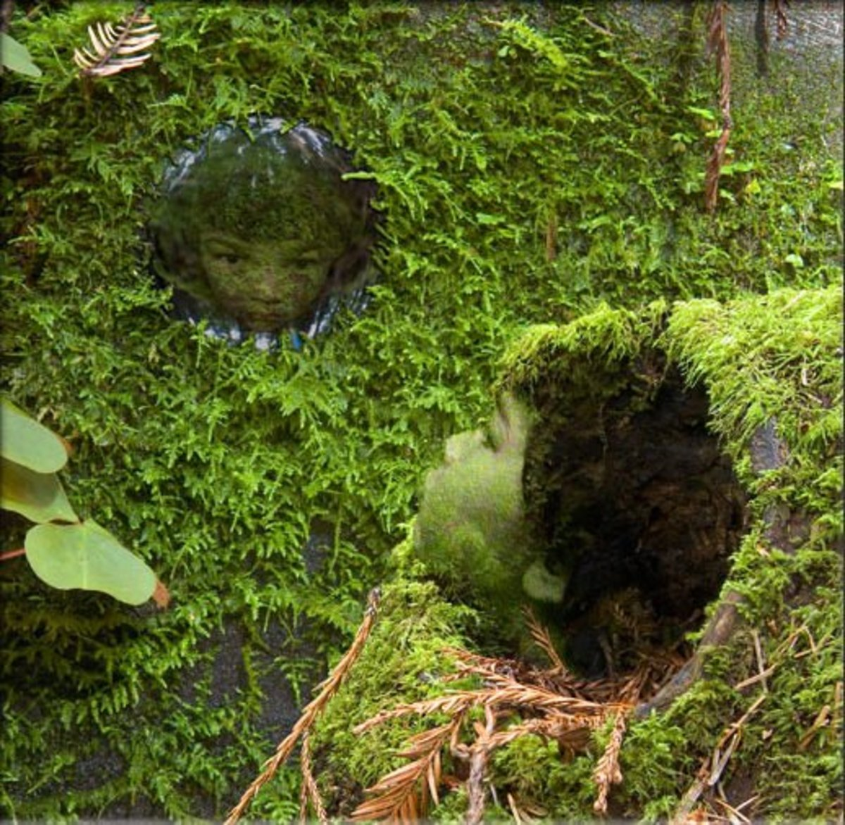 Moss People by David Wilson