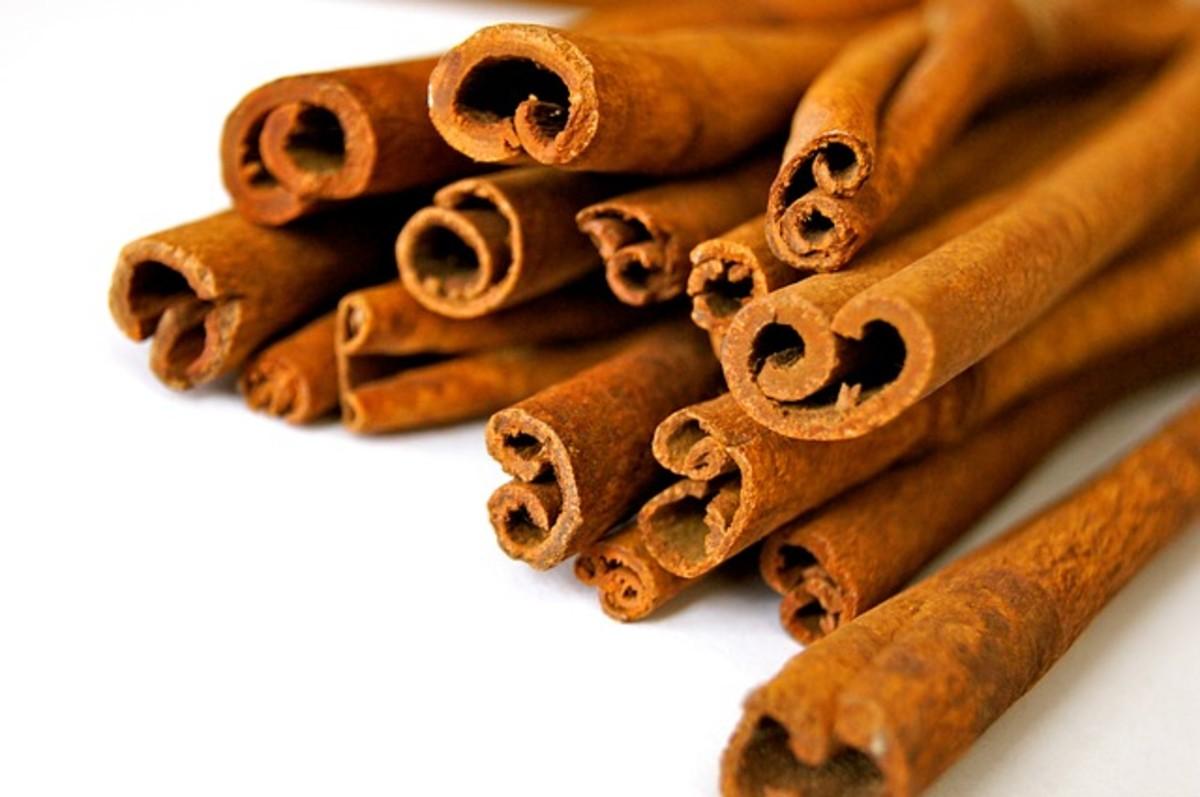 Large Cinnamon sticks