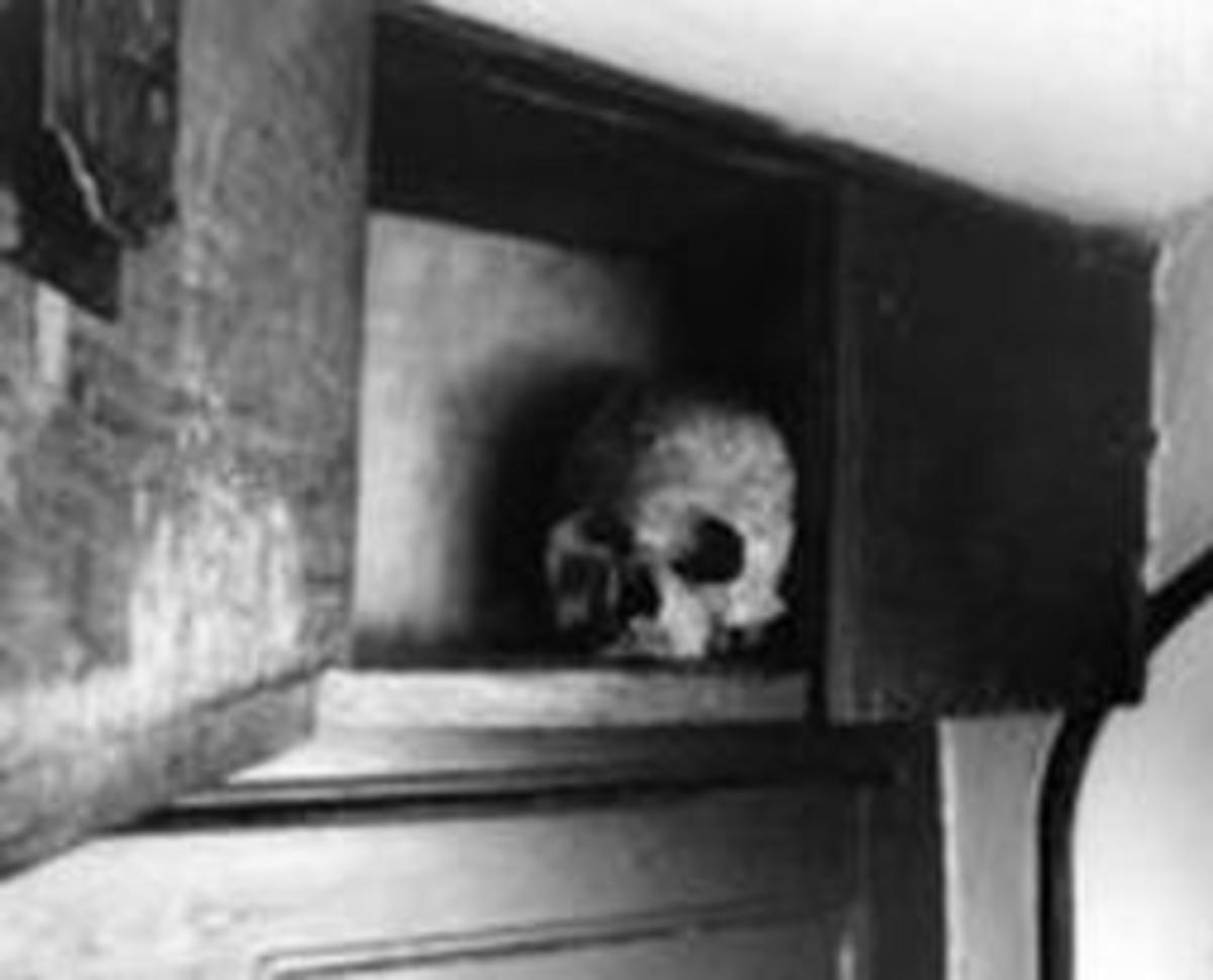 Brome's Skull