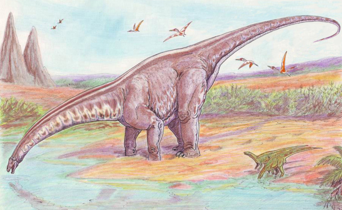 Paleontologists now know that sauropods like Apatosaurus (formerly Brontosaurus) likely did not live in swamps and lakes.