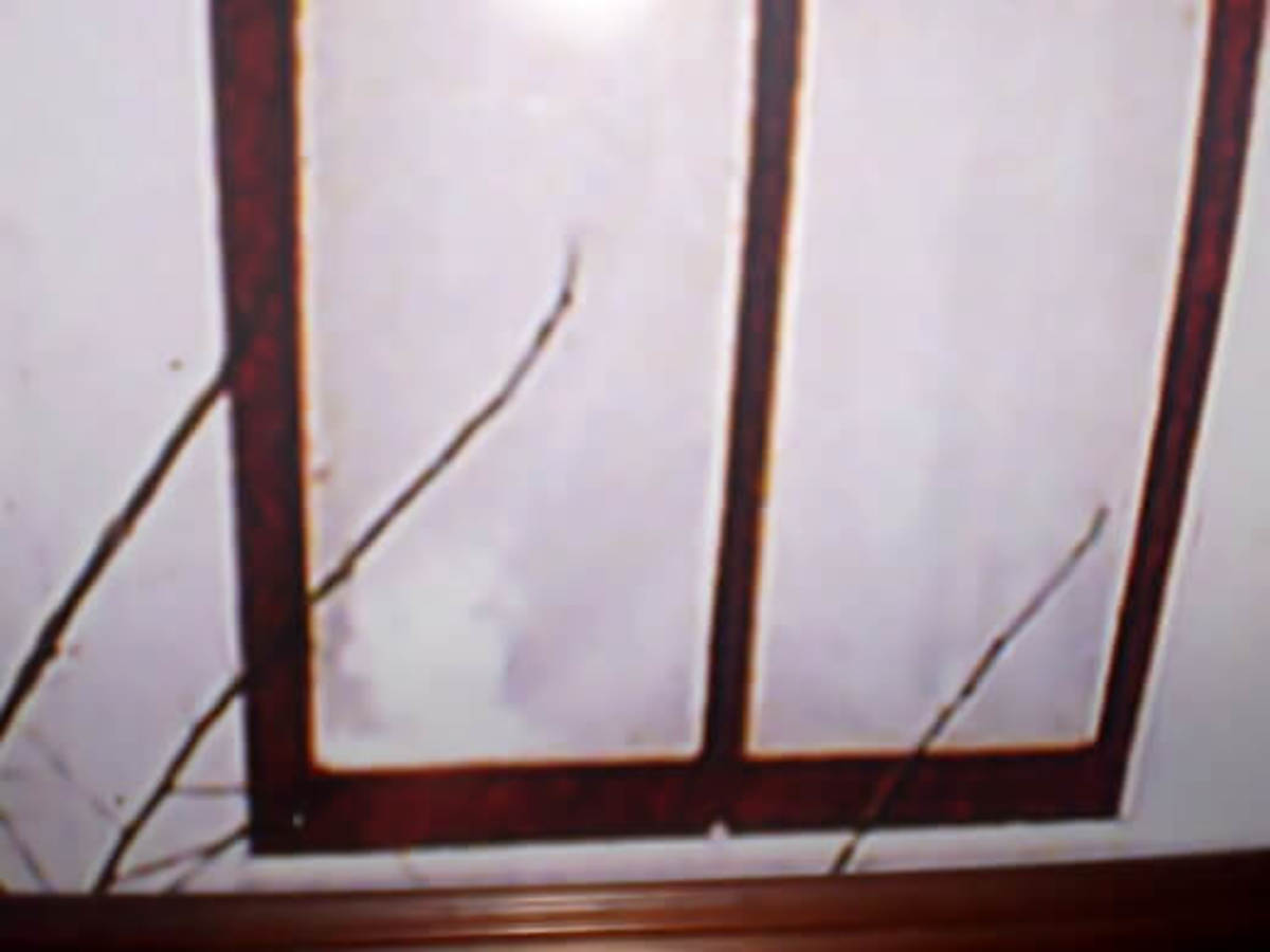 Spirit of Boyd or Paul Moore (bottom left window corner). Image shared on barn tackboard at Villisca Ax Murder House. Rephotographed.