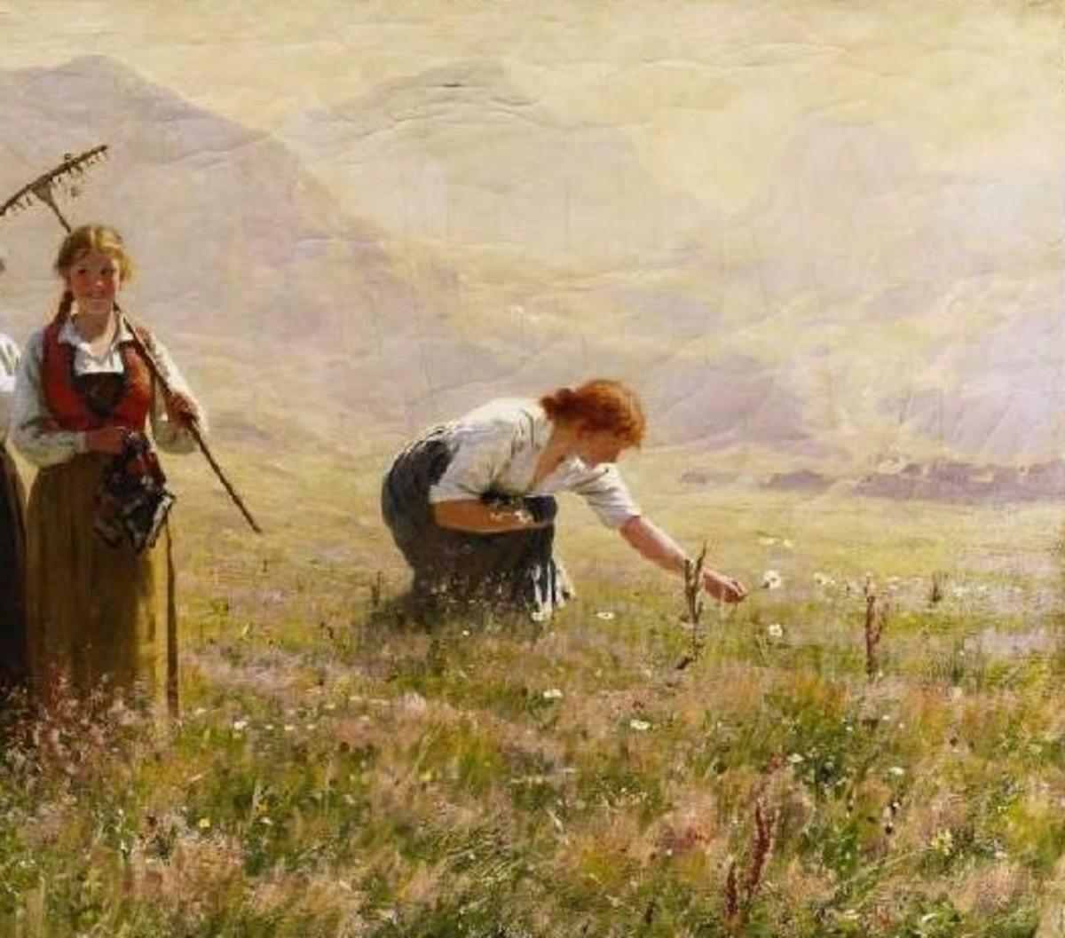 A woman gathers wildflowers in a field. Art by Hans Dahl.