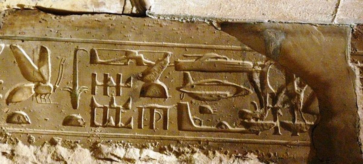 3,000 year old Egyptian hieroglyphs.