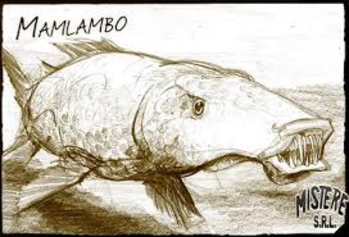 A drawing of the Mamlambo, a brain-sucking river creature.